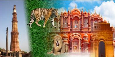 GOLDEN TRIANGLE WITH RANTHAMBORE 2