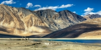 LADAKH (Markha Valley – Tsomoriri – Pangong Lake Trek)